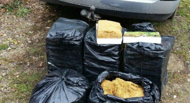 110 kg  rezanog duvana u Pasatu